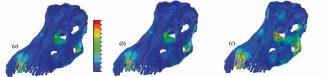 Drei Fressverhaltensmuster von Diplodocus und ihre jeweiligen Belastungsprofile für die Schädelknochen und die Zähne: a) Normales Beißen, b) Abreißen von Blättern, c) Abschälen von Rinde (University of Bristol)