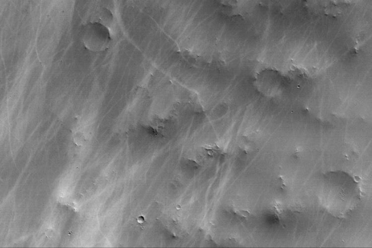 Spuren von Staubteufeln (Courtesy of NASA/JPL/Malin Space Science Systems)