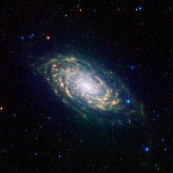 Messier 63. (NASA/JPL-Caltech/SINGS Team)