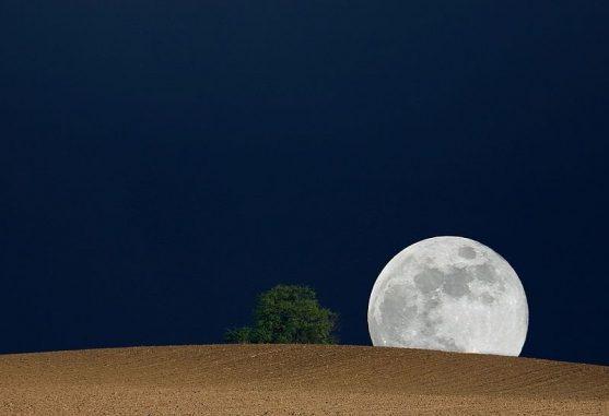 Mondaufgang. (Wikipedia / Thomas Fietzek / CC-BY-SA 3.0)