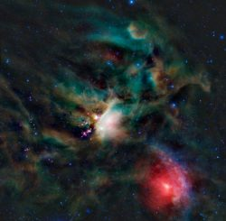 Die Sternentstehungsregion Rho Ophiuchi. (NASA/JPL-Caltech/UCLA)