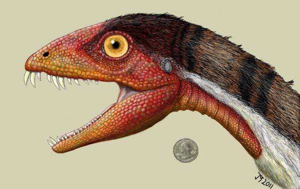 Illustration von Daemonosaurus chauliodus (Jeffrey Martz)