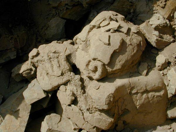 Die 4.000 Jahre alte Büste ist vollständig freigelegt, auch wenn die Beine nicht sichtbar sind, weil sie über den Rand einer Wand hängen. Die Finger der Hand sind auf der Trompete sichtbar. (Bernardino Ojeda / University of Missouri)