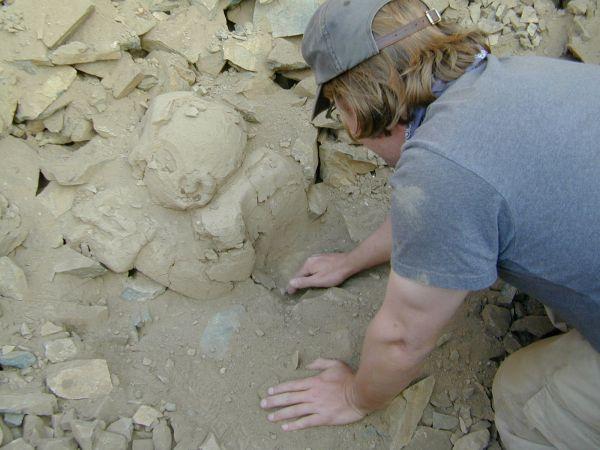 Neil Duncan, ein Anthropologe der MU beginnt die Ausgrabung der Büste des Musikers. (Bernardino Ojeda / University of Missouri)