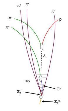 Schematische Darstellung der bei der Kollision und dem Zerfall entstandenen Teilchen (CDF Collaboration)
