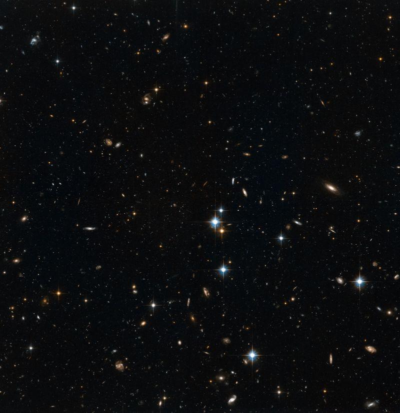 Sterne im Halo der Andromeda Galaxie. Im Hintergrund sind entfernte Galaxien erkennbar (NASA, ESA and T.M. Brown (STScI))