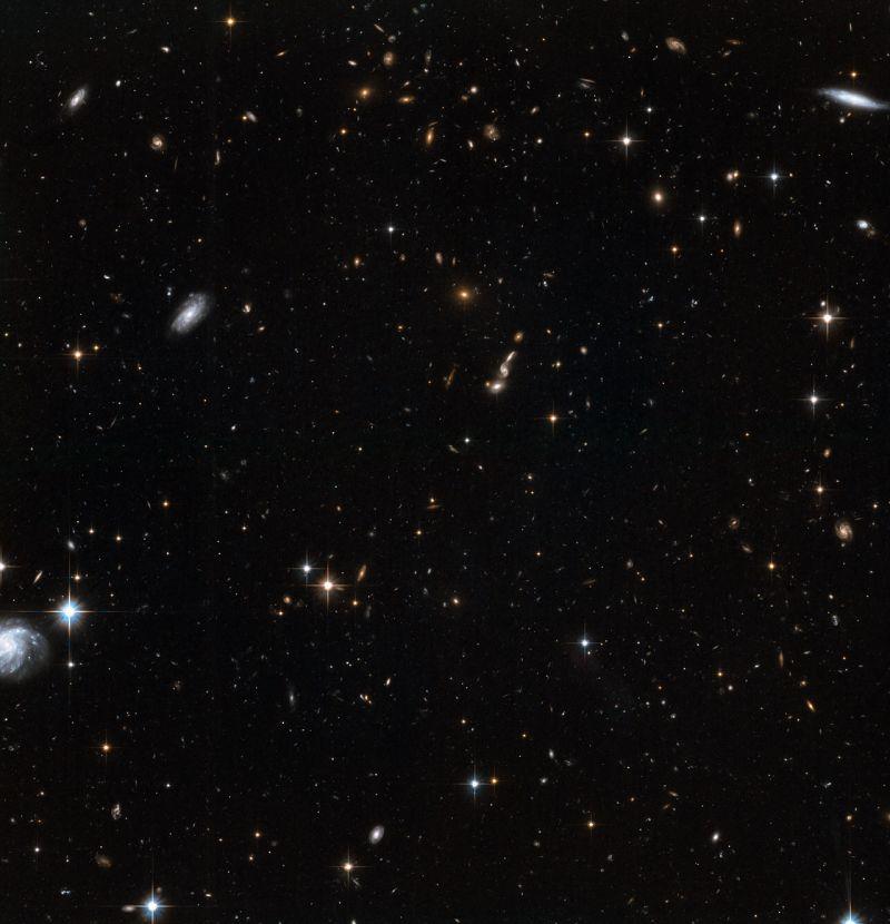 Eine weitere Aufnahme von Sternen im Halo der Andromeda Galaxie. Auch hier sieht man zahlreiche Galaxien im Hintergrund. (NASA, ESA and T.M. Brown (STScI))