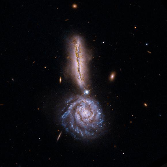 Optische Aufnahme von VV 340 (NASA / STScI / NRAO / A.Evans et al))