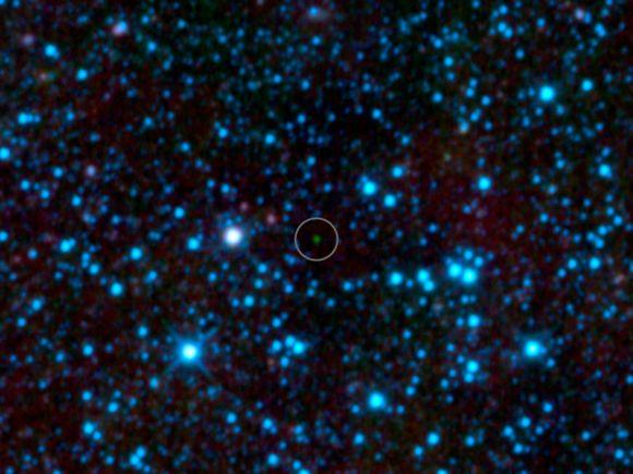 """Der bislang kälteste Braune Zwerg """"WISE 1828+2650"""" (grüner Punkt), aufgenommen vom Weltraumteleskop WISE (NASA / JPL-Caltech)"""