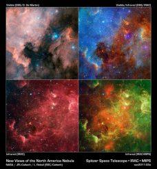 Der Nordamerika-Nebel in verschiedenen Wellenlängen. (NASA/JPL-Caltech/L. Rebull (SSC/Caltech))