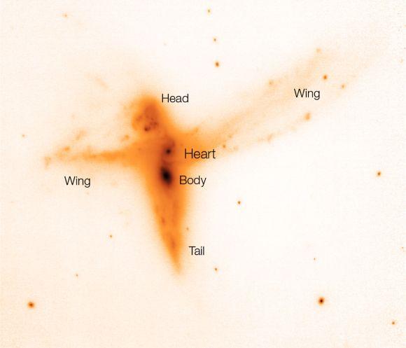 """""""The Bird"""" im K-Band. Die Beschriftungen verdeutlichen die verschiedenen """"Körperteile"""". (ESO)"""