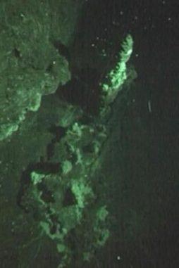 Tiefseeschlot im Südpolarmeer. (NOC/SOES)