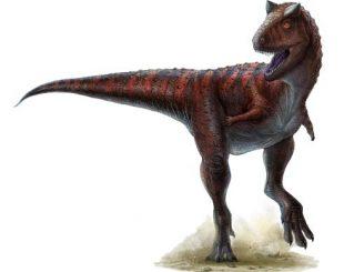 Illustration eines Carnotaurus (Univ. of Alberta)