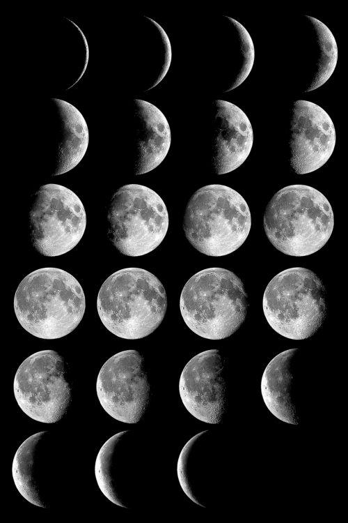 Die Mondphasen (Courtesy of NASA)