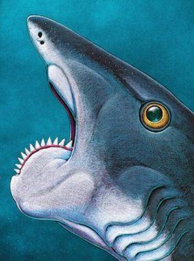 Künstlerische Darstellung eines urzeitlichen Fisches der Gattung Helicoprion von Ray Troll. (Ray Troll)