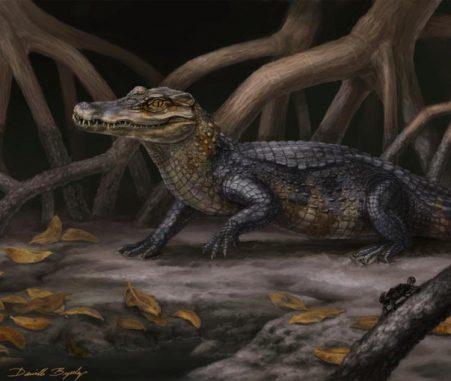 Rekonstruktion der neuen Gattung und Spezies Culebrasuchus mesoamericanus in seiner urzeitlichen Umgebung des frühen Miozäns in Panama. (Original artwork by Danielle Byerley (c) Florida Museum of Natural History)