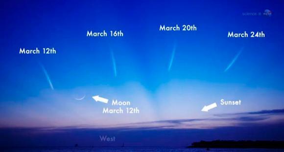 Diese Illustration zeigt die erwarteten Positionen des Kometen C/2011 L4 (PANSTARRS) am westlichen Abendhimmel (NASA)