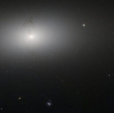 Staubstrukturen in der Seyfert-Galaxie NGC 2768, aufgenommen vom Weltraumteleskop Hubble. (ESA / Hubble & NASA; Acknowledgment: Judy Schmidt)