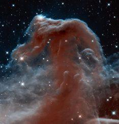 Das Weltraumteleskop Hubble machte diese Infrarotaufnahme des berühmten Pferdekopfnebels anlässlich seines 23. Beobachtungsjahres. (NASA, ESA, and the Hubble Heritage Team (STScI / AURA))