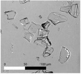 Ein Bild der Aschepartikel aus den Sedimentkernen des Lake Malawi. Die Asche besteht aus winzigen Glasscherben, die nur unter einem Mikroskop sichtbar sind. Sie entstanden durch die schnelle Erstarrung des Magmas (bzw. der Lava) im Flug, nachdem sie vom Toba-Supervulkan ausgestoßen wurde. (Dr. Christine Lane)