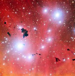 Die Sternentstehungsregion IC 2944 mit einigen dunklen Bok-Globulen, aufgenommen vom Very Large Telescope der Europäischen Südsternwarte in Chile. (ESO)