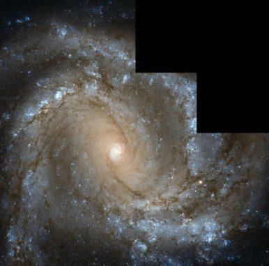 Die Spiralgalaxie Messier 61, aufgenommen vom Weltraumteleskop Hubble. (ESA / Hubble & NASA, Acknowledgements: G. Chapdelaine, L. Limatola, and R. Gendler)