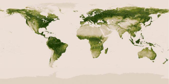 Globale Vegetationskarte, basierend auf den Daten von Suomi NPP. (NASA / NOAA)