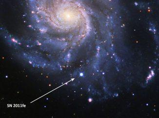 Die Supernova SN 2011fe (Pfeil) in der Feuerrad-Galaxie im Sternbild Großer Bär. Ihr Spektrum stellt einen Maßstab dar, an dem zukünftige Beobachtungen von Typ-Ia-Supernovae gemessen werden können. (B. J. Fulton, Las Cumbres Observatory Global Telescope Network)