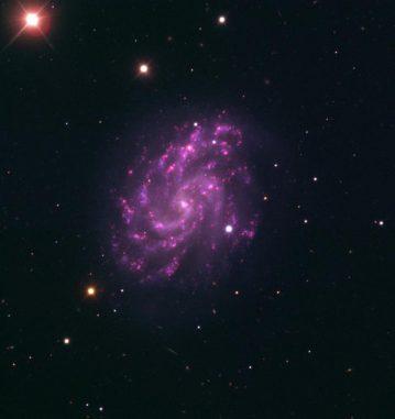 Die Balkenspiralgalaxie NGC 5584 und die Supernova SN 2007af, aufgenommen mit dem Very Large Telescope der Europäischen Südsternwarte in Chile. (ESO)