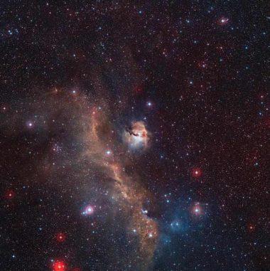 Die Sternentstehungsregion IC 2177, genannt Möwennebel. (ESO / Digitized Sky Survey 2. Acknowledgement: Davide De Martin)