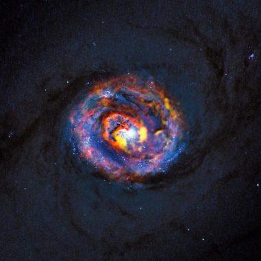 Der Kernbereich der aktiven Galaxie NGC 1433. Beobachtungen mit dem Atacama Large Millimeter / submillimeter Array (ALMA) offenbaren in Gelb- und Orangetönen eine spiralförmige Struktur. Sie kennzeichnen Gasmassen, die um das zentrale supermassive Schwarze Loch der Galaxie wirbelt. (ALMA (ESO / NAOJ / NRAO) / NASA / ESA / F. Combes)