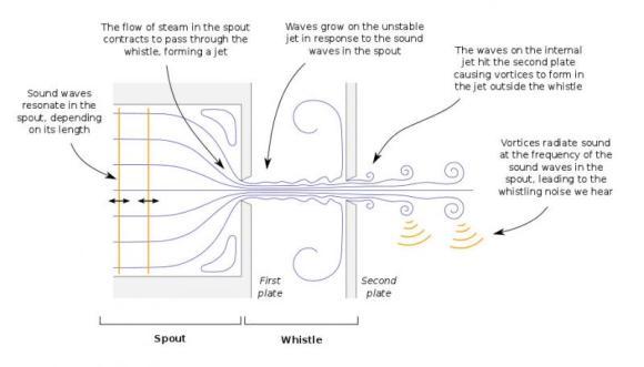 Diese schematische Darstellung zeigt den Mechanismus, der das Pfeifen eines Teekessels erzeugt. (R. Henrywood)