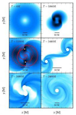 Die verschiedenen Stadien beim Kollaps eines fragmentierten supermassiven Sterns. Jede Grafik zeigt die Dichteverteilung in der Äquatorebene. Der Stern rotiert so schnell, dass die Konfiguration am Beginn des Kollaps (oben links) quasi-toroid ist: Die maximale Dichte ist unzentriert und erzeugt einen Ring aus maximaler Dichte. Die Simulation endet, nachdem das endgültige Schwarze Loch entstanden ist (unten rechts). (Christian Reisswig / Caltech)