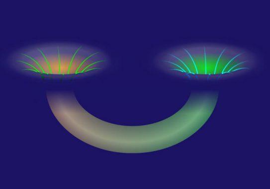 Diese Illustration zeigt ein Wurmloch, das zwei Schwarze Löcher miteinander verbindet. (Alan Stonebraker / American Physical Society)
