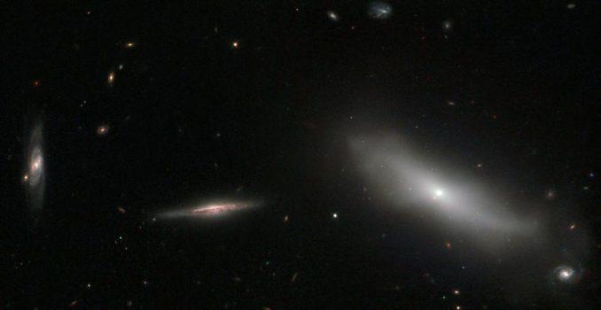 Die Galaxie NGC 1190 (rechts) gehört zur Hickson Compact Group 22, einer sehr kompakten Galaxiengruppe, die aus insgesamt fünf Mitgliedern besteht. (ESA / Hubble & NASA Acknowledgement: Luca Limatola)
