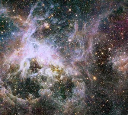 Hubble-Aufnahme des Tarantelnebels in infraroten Wellenlängen. Die Region besteht aus Sternhaufen, leuchtendem Gas und dunklen Staubwolken. (NASA, ESA, E. Sabbi (STScI))