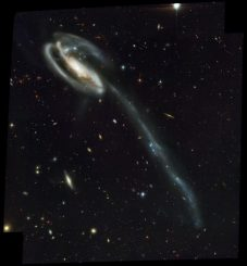 Die Kaulquappengalaxie Arp 188, aufgenommen vom Weltraumteleskop Hubble. Der 280.000 Lichtjahre lange Gezeitenschweif ist deutlich erkennbar. (NASA)