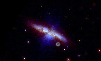 Die Supernova SN 2014J, aufgenommen vom Ultraviolet/ Optical Telescope an Bord des Swift-Satelliten. Die Explosion fand in der Galaxie M82 statt und ist mit einem Kreis markiert. (NASA / Swift / P. Brown, TAMU)