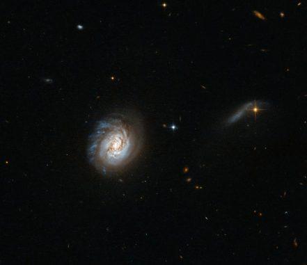 Hubble-Aufnahme der leuchtkräftigen Infrarotgalaxie MCG-03-04-014. (ESA / Hubble & NASA; Acknowledgement: Judy Schmidt)