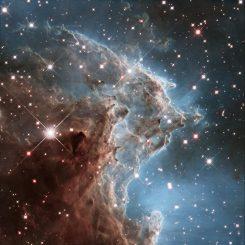 Anlässlich seines 24. Jahrestags im Weltraum hat das Hubble Space Telescope diese Aufnahme von einem Teil des Affenkopfnebels NGC 2174 gemacht, einer Sternentstehungsregion im Sternbild Orion. (NASA, ESA, and the Hubble Heritage Team (STScI / AURA))