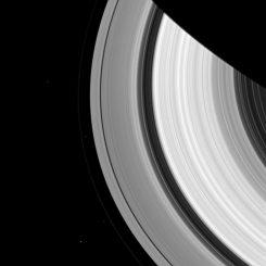 Cassini-Aufnahme von Epimetheus (oben), den Schäfermonden Prometheus und Pandora (innerhalb und außerhalb des F-Rings) und Janus (unten) neben dem Ringsystem Saturns. (NASA / JPL-Caltech / Space Science Institute)