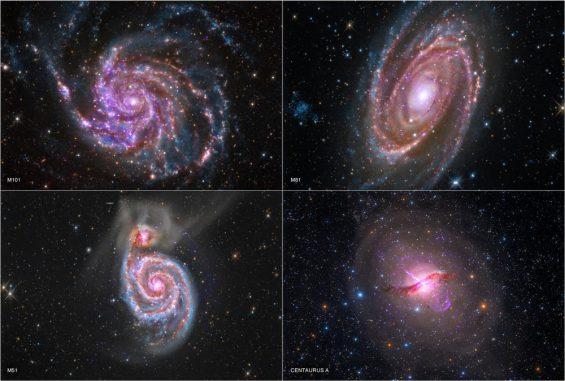 Die Galaxien M101, M81, M51 und Centaurus A, basierend auf Röntgendaten von Chandra, Infrarotdaten von Spitzer und optischen Daten von Amateurastronomen. (X-ray: NASA / CXC / SAO; Optical: Detlef Hartmann, Rolf Olsen (Centaurus A); Infrared: NASA / JPL-Caltech)