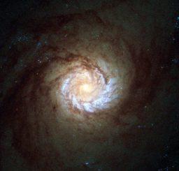 Hubble-Aufnahme der Spiralgalaxie Messier 61. Sie ist als Starburst-Galaxie klassifiziert und zeigt enorm hohe Sternentstehungsraten. (ESA / Hubble & NASA; Acknowledgement: Det58)
