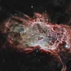 Diese Aufnahme des Flammennebels basiert auf Röntgen- und Infrarotdaten verschiedener Teleskope, darunter auch die Weltraumteleskope Chandra und Spitzer. (X-ray: NASA / CXC / PSU / K. Getman, E. Feigelson, M. Kuhn & the MYStIX team; Infrared: NASA / JPL-Caltech)