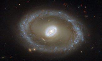 Die Seyfert-Galaxie NGC 3081, aufgenommen vom Weltraumteleskop Hubble. (ESA / Hubble & NASA; Acknowledgement: R. Buta (University of Alabama))