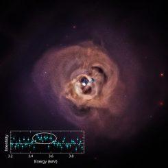 Dieses Bild zeigt eine neue Ansicht des Perseus-Galaxienhaufens, einem der Galaxienhaufen, die in der neuen Studie untersucht wurden. (NASA / CXC / SAO / E.Bulbul, et al.)