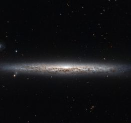 Die Spiralgalaxie NGC 3501, aufgenommen vom Weltraumteleskop Hubble. (ESA / Hubble & NASA; Acknowledgement: Nick Rose)