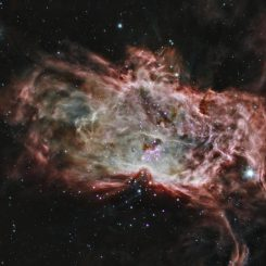 Dieses Kompositbild zeigt den Flammennebel im Sternbild Orion, basierend auf Daten der Weltraumteleskope Chandra und Spitzer. (X-ray: NASA / CXC / PSU / K.Getman, E.Feigelson, M.Kuhn and the MYStIX team; Infrared: NASA / JPL-Caltech)