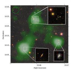 Die Brücke aus Wasserstoffgas (grün) erstreckt sich von der großen Galaxie unten links zu der Galaxiengruppe oben. Eine dritte Galaxie (rechts) besitzt auch einen kurzen Gasstrom. Die drei kleinen Bilder zeigen detaillierte Ansichten der verschiedenen Galaxien. (Rhys Taylor / Arecibo Galaxy Environment Survey / The Sloan Digital Sky Survey Collaboration)