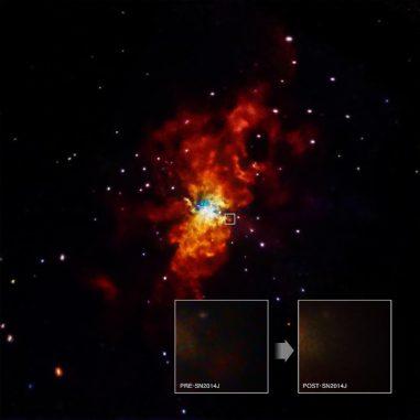 Die Galaxie M82 mit dem Ort der Supernova SN 2014J, aufgenommen vom Weltraumteleskop Chandra. (NASA / CXC / SAO / R.Margutti et al)